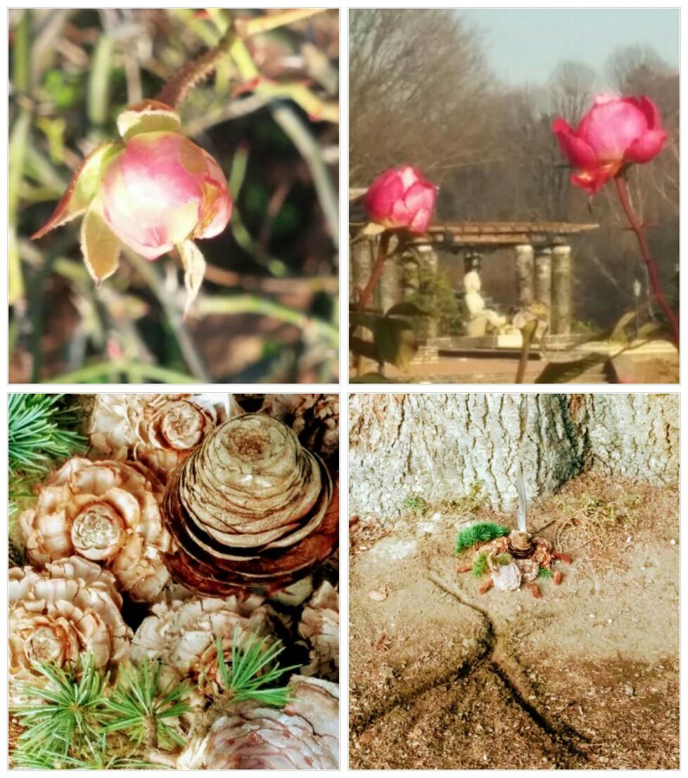 haiku-bouquetdefleurs-GabrielleMiaeKa.jpg